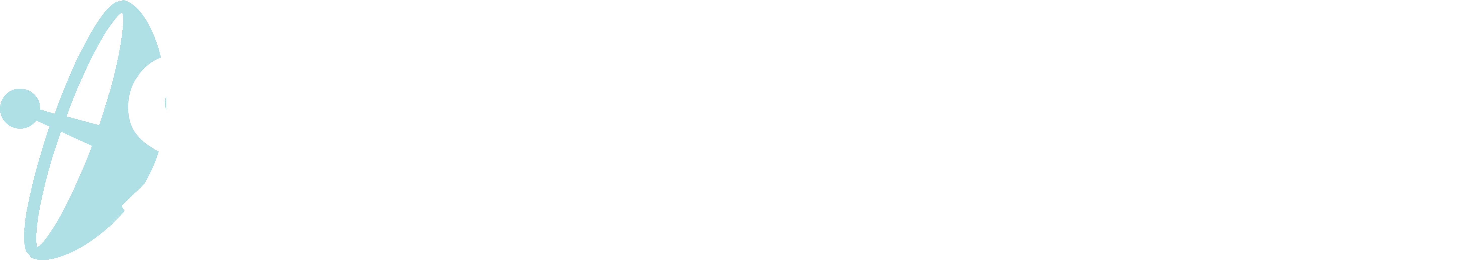 Satellite 2019 Logo